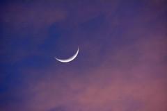 The Moon (NaturalLight) Tags: moon crescent kansas wichita chisholmcreekpark