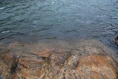 (NataliaMaverakis) Tags: ocean california travel sea wallpaper lake macro beach nature water rain river dark aquarium coast rocks deep rocky adventure clear explore shore foam