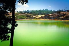 Ooty: Sandynulla Reservoir (deepgoswami) Tags: india lake dam tamilnadu ooty coonoor sandynulla sandynullareservoir