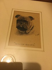 Beautiful bulldog art at www.collectibulldogs.com  #englishbulldog #lovebulldogs #bulldogblogger #paintings #artist #art #squishyface #wrinkles #new #interesting #excited #love #Beautiful #amaze #brilliant (eiffion.ashdown78) Tags: new art love beautiful interesting artist paintings excited englishbulldog wrinkles brilliant amaze squishyface lovebulldogs bulldogblogger