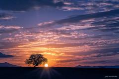 Atardecer sobre las llanuras de Hijate. (Jose HL) Tags: sunset sol landscape atardecer paisaje nubes puestadesol