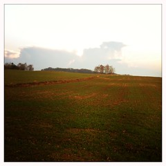 "Spring field (Jerzy Durczak (a.k.a."" jurek d."")) Tags: field landsape"