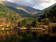Embalse de Piedralaves (vila) (alfonsocarlospalencia) Tags: verde luz paz paisaje pinos niebla reflejos montaas embalse orilla vila piedralaves
