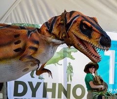 DYHNO - Tierra de Dinosaurios (29) (Josu Caraveo) Tags: mxico bajacalifornia mexicali dinosaurios bosquedelaciudad dyhno dinosaurios