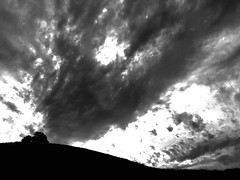 """""""On a Hill Far Away"""" California Oaks trees silhouetted on a distant hill with ominous clouds as their backdrop. Sillouette Sillouettes Oak Trees Blackandwhite Black & White Blackandwhite Photography Clouds Clouds And Sky (bradhodges09) Tags: blackandwhite clouds blackwhite sillouette oaktrees blackandwhitephotography sillouettes cloudsandsky"""