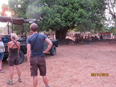 Zimbabwe (266) (Absolute Africa 17/09/2015 Overlanding Tour) Tags: africa2015