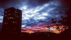 Una tarde de enero (Greñitas) Tags: square squareformat hudson iphoneography instagramapp uploaded:by=instagram