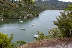 _DSC2759 (frozenpuddle) Tags: newzealand nz waikato ferrylanding