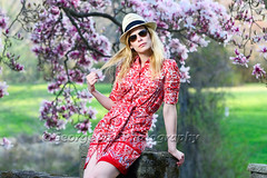 Portriat of a Woman in a Garden Under a Blooming Magnolia Tree (George Oze) Tags: flowers red portrait woman usa sexy fashion horizontal outdoors us newjersey spring model colorful sitting dress unitedstatesofamerica lifestyle blond trendy attractive northamerica stonewall fedora chic thin summerdress leaning designerclothing beautifulpeople fit stylish lookingaway caucasian magnoliatree selectivefocus fashionmodel aviatorsunglasses hunterdoncounty readington onewomanonly onewoman caucasianethnicity 34length caucasianwoman shortdress springdress toryburch holdinghair 3035yearsold 3549yearsold