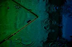 Rainy Day 2 (miroto2014) Tags: wet rain pavement raindrops leicestersquare puddles wetpavement