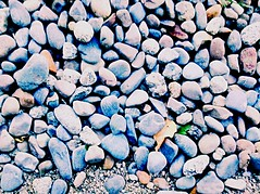 You rock my world (audreycurtis125) Tags: rocks pebbles converse 2016