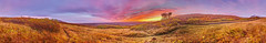 Mountain Sunset (John_de_Souza) Tags: sunset panorama mountain color colour nature landscape evening iceland sony grassland plain svartifoss floodplain skaftafellnationalpark zeiss1635 johndesouza icelandimages a7r2