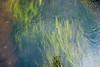 Waters (akk_rus) Tags: nikon europe russia nikkor россия moscowregion d80 serednikovo 18135mm европа подмосковье nikond80 18135mmf3556g afsnikkor18135mm13556ged середниково