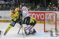 "DEL16 Kölner Haie vs. Krefeld Pinguine 17.01.2016 120.jpg • <a style=""font-size:0.8em;"" href=""http://www.flickr.com/photos/64442770@N03/24642282120/"" target=""_blank"">View on Flickr</a>"