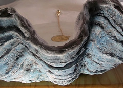 Blue Sink 6 (LittleGems AR) Tags: ocean blue sea sculpture sun beach home giant bathroom shower aquarium soap sand bath sink unique decorative aquamarine shell craft style toilet towel clam basin special clean shampoo taps wash seashell pearl nautical reef decor spa luxury opulent fossils clamshell mollusks cloakroom bespoke tridacna sculpt crafted gigas facetowel