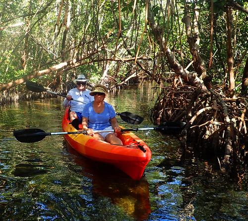2_22_16 Kayak Tour Sarasota FL 02