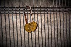 Plock (diminji (Chris)) Tags: paris france love fence bridges locks hdr oilpaint riverseine parisbridges loveparis hdrtoning pixelbender