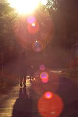 Father&Son (19h92) Tags: light sun soleil child walk lumire father promenade enfant fort fils pre