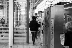 animal friends (horst_fischer56) Tags: bear people bw stuffedtoy train germany deutschland outdoor streetphotography zug bahnhof menschen railwaystation schwarzweiss br rheinlandpfalz ludwigshafen stofftier blackwithe einfarbig schwarzweis xpro1 bahnhofmitte strasenfotografie stationcenter fujixpro1