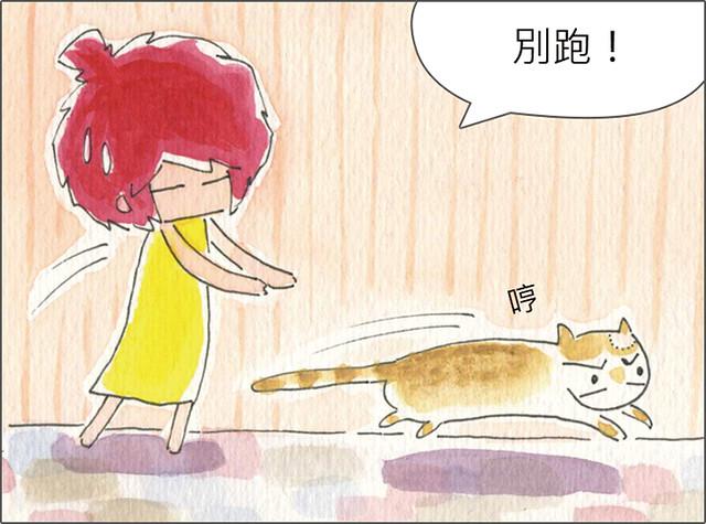 家裡來了一隻貓 貓咪鬧彆扭