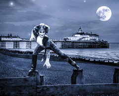 Cats - UK Tour Promo Image for Eastbourne Theatres / Really Useful Group (Peter Gurr Creative) Tags: uk cats moon beach composite photoshop stars pier promo twilight tour theatre dusk musical eastbourne promotional groyne theatres musicaltheatre eastbournepier bombalurina
