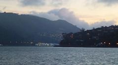 Otago Harbour at Dawn (geoffreyw@kinect.co.nz) Tags: harbour otago dunedin