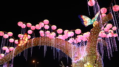 2016 Taiwan Lantern Festival, Taoyuan, Taiwan (My View, My Life) Tags: light sunset red sun flower color animal festival night dark monkey lily shot lotus dragonfly bokeh low year taiwan chinesenewyear frog trail lantern wish lovely taoyuan brilliant 天燈 燈籠 燈會 元宵節 2016