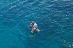 DSC05194 (Mathias Apitz (München)) Tags: egypt ägypten marsa alam el quseir sub aqua tauchen diving pensee royal reise travel red sea rotes meer urlaub holiday pool strand beach fische fish reef riff korallen koralle coral mathias apitz