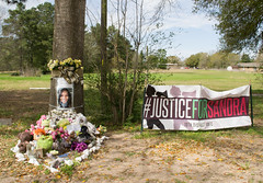 Sandra Bland Memorial, University Drive, Prairie View, Texas 1603061200 (Patrick Feller) Tags: county trooper david black dan public neglect drive justice office am university texas greg view sandra african chief brian south glenn w ken patrick evil police jim smith safety hempstead southern crime american pigs jail bland murder hanging lives law courthouse conservative enforcement sheriff crow prairie republican abbott racism punishment department royce legal abuse prisoner hartley inmate paxton matter hick lynching waller backward bigotry abuseofpower tdps encinia