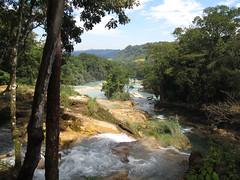 "Cascades de Agua Azul <a style=""margin-left:10px; font-size:0.8em;"" href=""http://www.flickr.com/photos/127723101@N04/25508603390/"" target=""_blank"">@flickr</a>"