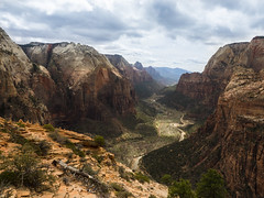 Off Of Angel's Landing (Robby Armentano) Tags: road trip southwest robert river spring dangerous break zoom parks olympus canyon hike rob landing virgin trail national backpacking angels american pro zion 16 mm robby em1 2016 1240 armentano