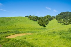 Pond - Rolling Hills Open Space Park - Solano County - California - 26 March 2016 (goatlockerguns) Tags: california park county trees usa mountains west tree nature coast oak open natural space unitedstatesofamerica vacaville hills trail bayarea eastbay solano rolling fairfield vaca