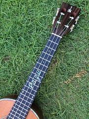 image2 (pazubox) Tags: ukulele gitarre newsusingcustomskytenor