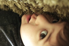 Curious eyes (megmossphotography) Tags: blue baby canon photography 50mm toddler hugs cuddles