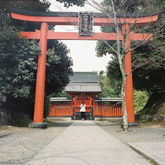 (Kuo_YungChih.TW) Tags: street travel light red white tree 120 6x6 film girl japan temple back kyoto fuji pray sunny snap hasselblad arashiyama  500c  nippon        pro400h streetsnap     travelgraphy