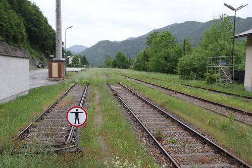 2015_05_30_Ybbstalbahn_515