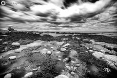 Whitburn, North East (Silent Eagle  Photography) Tags: sea sky bw plants seascape reflection water monochrome beautiful rock clouds canon yahoo google long shadows silent eagle outdoor lee sep northeast nube whitburn flipboard phptpgraphy leefilters bigstopper silenteaglephotography silenteagle09