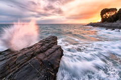 The waves and the sunset (Emone Giovanni) Tags: sunset red sea sky seascape silhouette yellow clouds nikon tramonto nuvole mare liguria wave tokina giallo cielo albero camogli rosso onda scoglio d7100