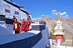 Thiksay Monastery [Explored] (pallab seth) Tags: city travel panorama india mountain tourism landscape student asia tour monastery valley lama layers leh studying himalayas thikse highaltitude gompa jammuandkashmir indusvalley thiksay thikseygompa