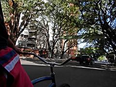 SoloParaEntendidos (FDT PH) Tags: city argentina bicycle arboles buenos aires bicicleta riding libertador cicling