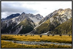 Mount Cook - K09b (coopertje) Tags: newzealand mountain lake nature berg glacier mount alpine southisland laketekapo tussock nieuwzeeland mountcook aoraki pukaki mountcooknationalpark gletsjer darkskyreserve