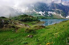 Trbsee (welenna) Tags: blue summer sky mist mountain lake mountains alps water misty fog landscape switzerland see wasser nebel view swiss natur blumen berge alpen blume wasserspiegel schwitzerland titlisundtrbsee