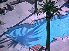 pool /shadow (kenjet) Tags: above trees shadow tree water pool shadows aerialview aerial palm fromabove resort deck palmtree