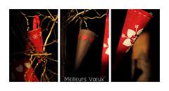 triptyque de Vux (Steph Blin) Tags: winter red snow home rouge heart hiver newyear neige nol triptyque dcoration happynewyear intrieur cur flocons dcor vux 2016 corne feutre bonneanne meilleursvux
