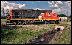_JM13343 (saltley1212) Tags: railroad cn florida central emd gp9 7033 gp9rm fecn