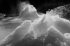 ice flower 4 (withcamera) Tags: trees winter forest landscapes nikon outdoor parks southkorea gangwondo iceflowers landscapephoto sokchosi nikondf 24~70lens seoraknativebotanicgarden