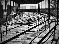 Shadows and Light (davepickettphotographer) Tags: city cambridge building bike bicycle outdoor shed storage cambridgeshire racks sheds cambridgeuniversity davepickettphotographer
