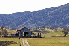 On the way to Stonyford (trifeman) Tags: california winter canon glenn 7d february 2016 glenncounty canon7dmarkii