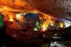 IMH_0180 (presse_cfc2) Tags: vietnam cave halong sungsot