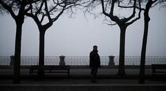Astorga en la Niebla (II) (larnal_kth) Tags: shadow tree grey haze arboles gray paseo niebla peasant astorga shilouette paseante paisano